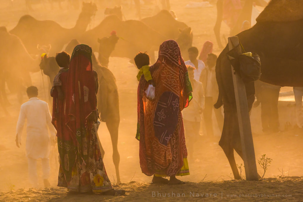 Pushkar Camel Trading Ground